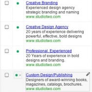 Google Ad Variety